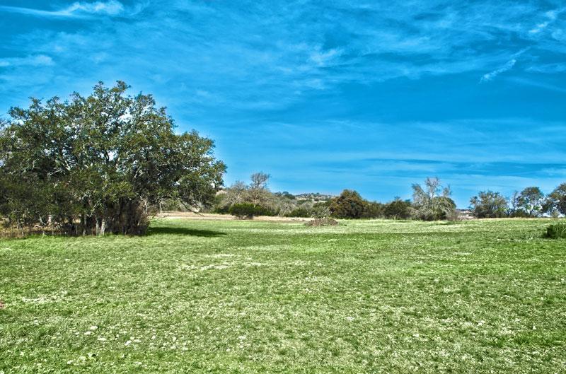 Lot 53 - 0.37 acre - ON GREENBELT!